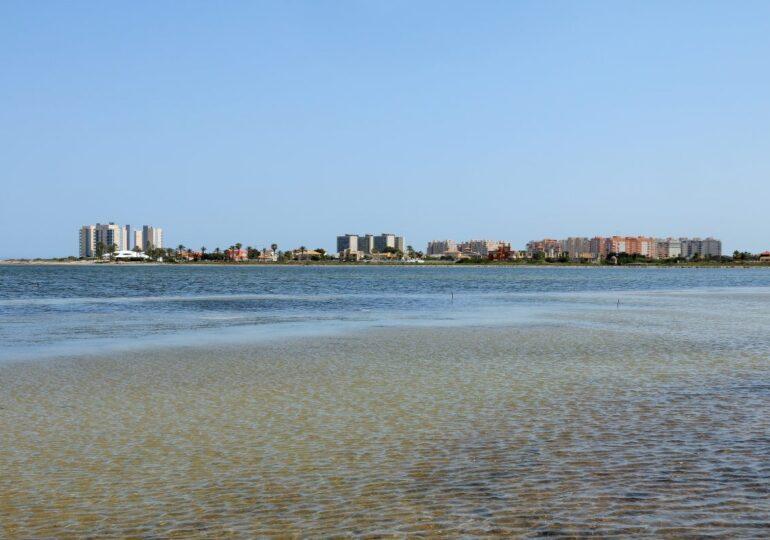 Alertan de la necesidad inmediata de la gola de Marchamalo tras la aparición nuevas bolsas de Anoxia en el Mar Menor